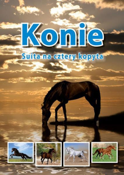 Konie Suita Na Cztery Kopyta Książka Dla Dzieci